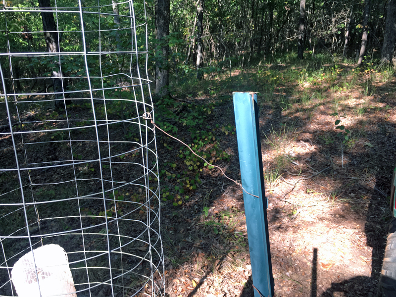 After installing this wire, I drove the fence post a little deeper to take out the slack in the wire. (Photo © Russ Chastain)