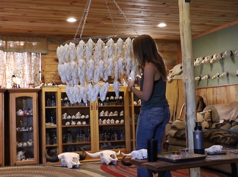 Building the impressive coyote-skull chandelier.