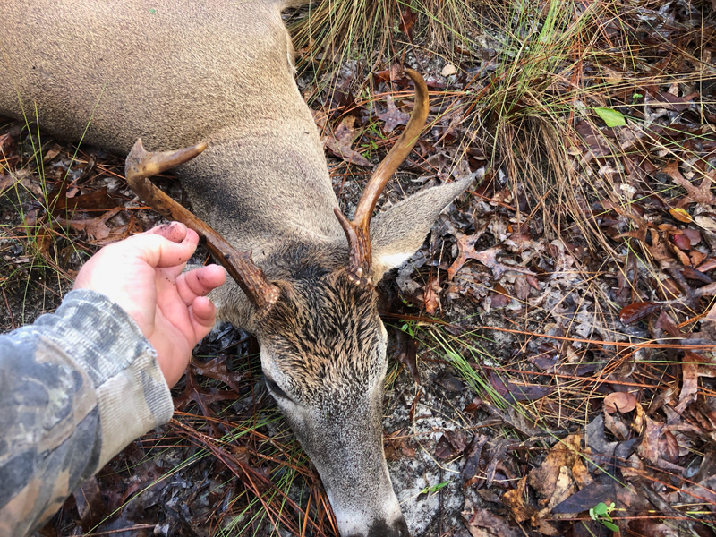 Opening morning Florida buck. (Photo © Russ Chastain)