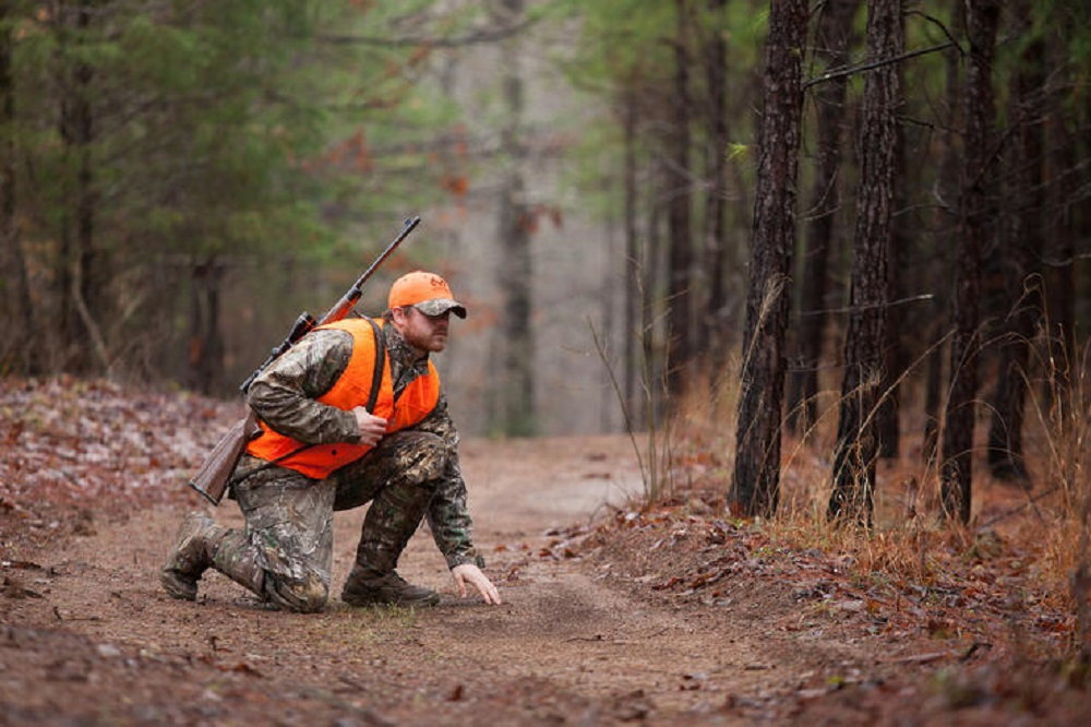 Take a Deer Hunt Hike