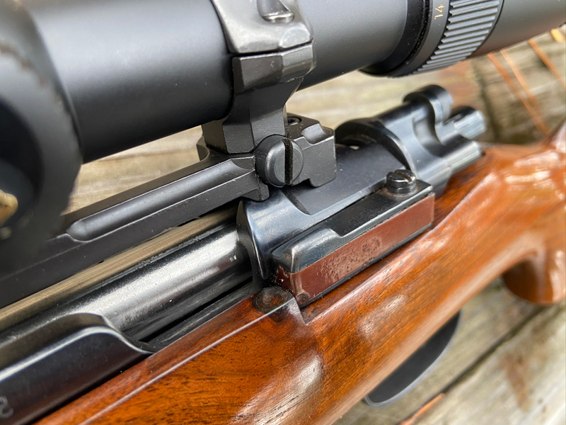 Two-tone bolt release stands out. Location of knot on stock seems perfect. (Photo © Russ Chastain)