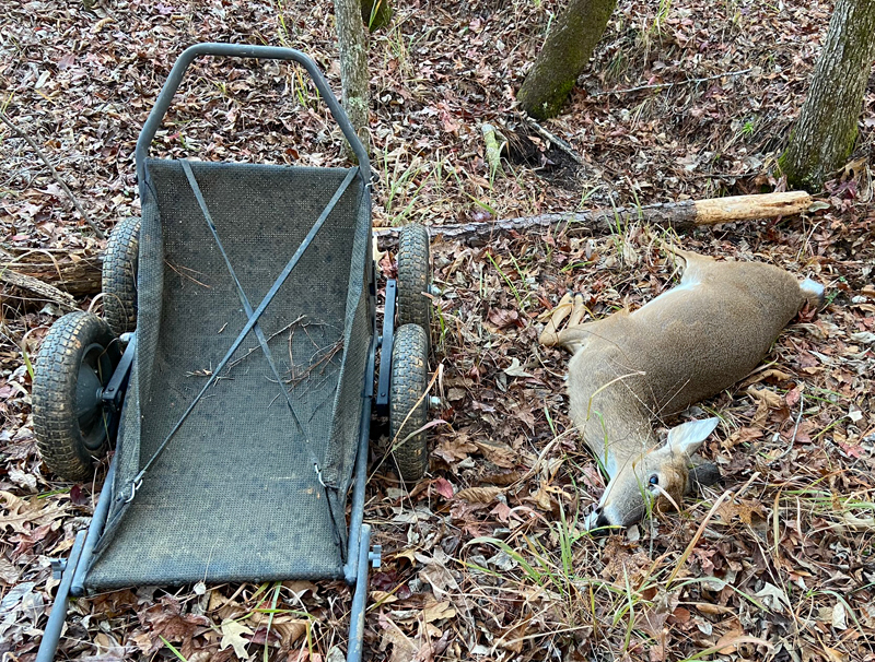 I needed my Crawler cart to get the deer out of the bottom by myself. (Photo © Russ Chastain)