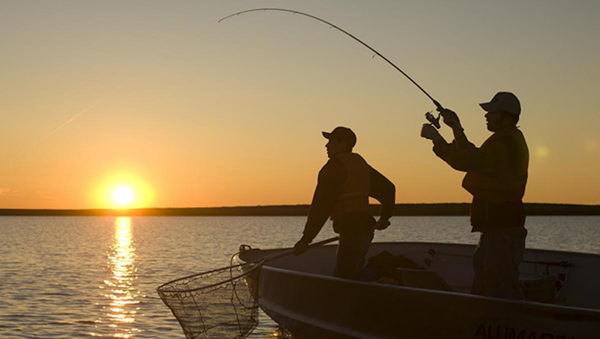 Finding the Best Spinning Reel for You