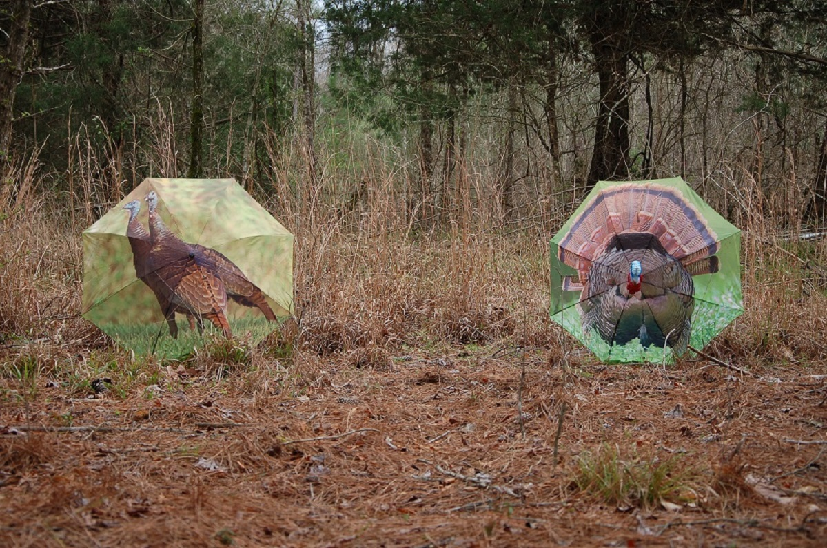 Turkey Decoy Strategies