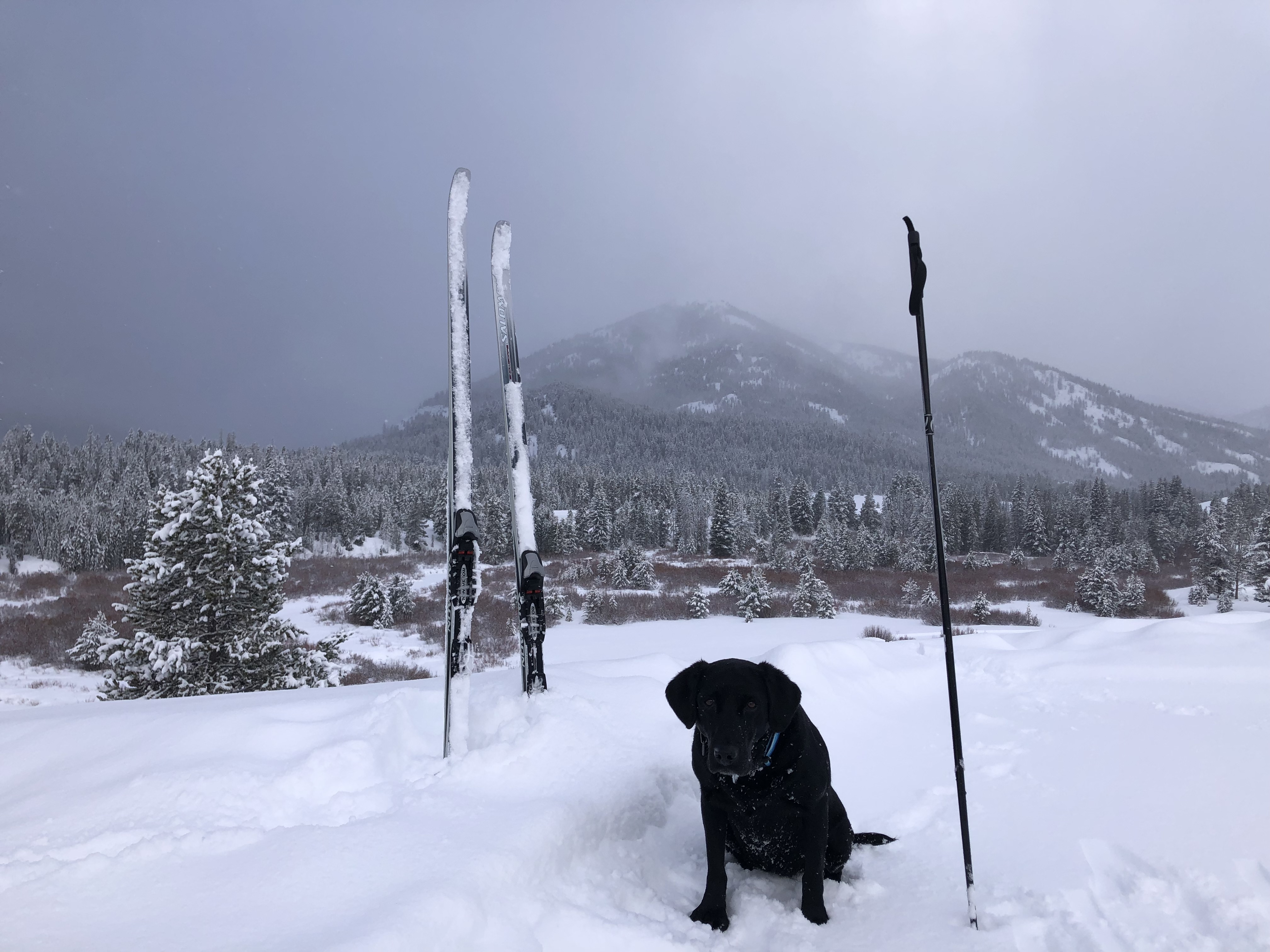 Home On The Range #14: No Roads? Snow Problem With Nordic Skis