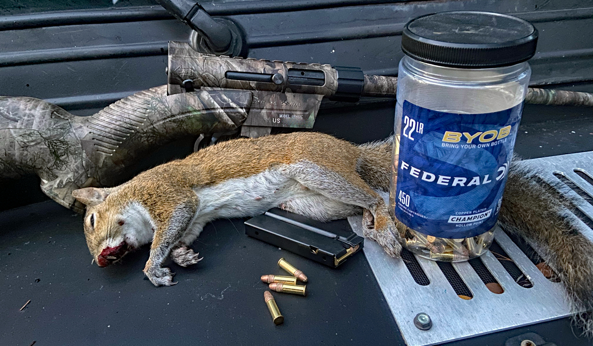Squirrel Hunting With the Henry AR-7 Survival Rifle