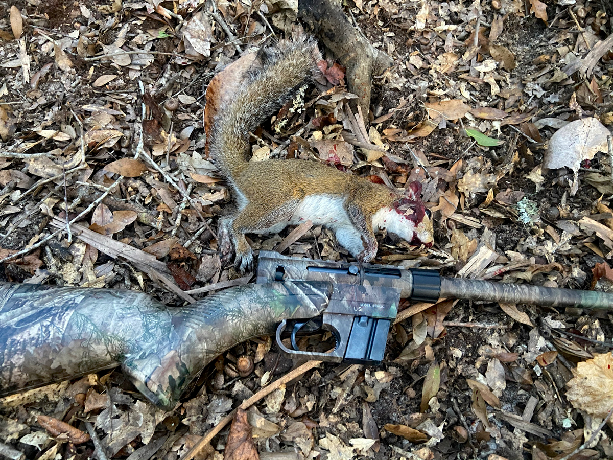 I bagged this young & tender squirrel with a 25-yard head shot. (Photo © Russ Chastain)