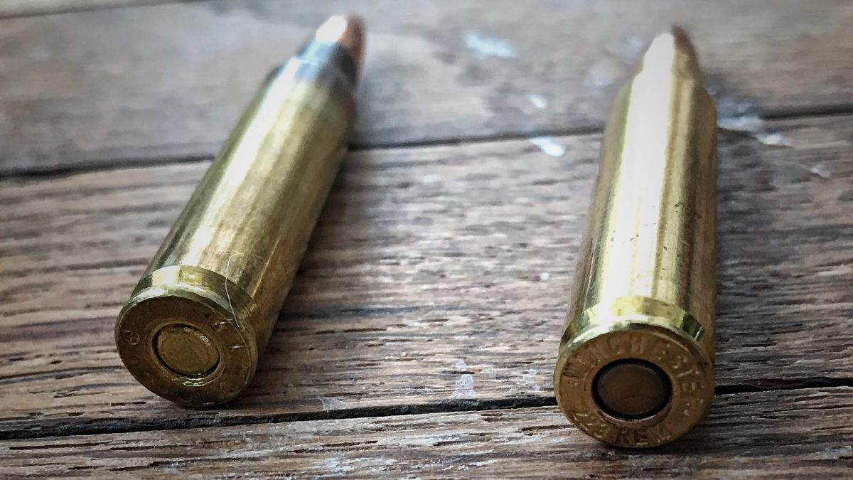 It's 223 Day! – 223 Remington – What, Why, and our Appreciation for It