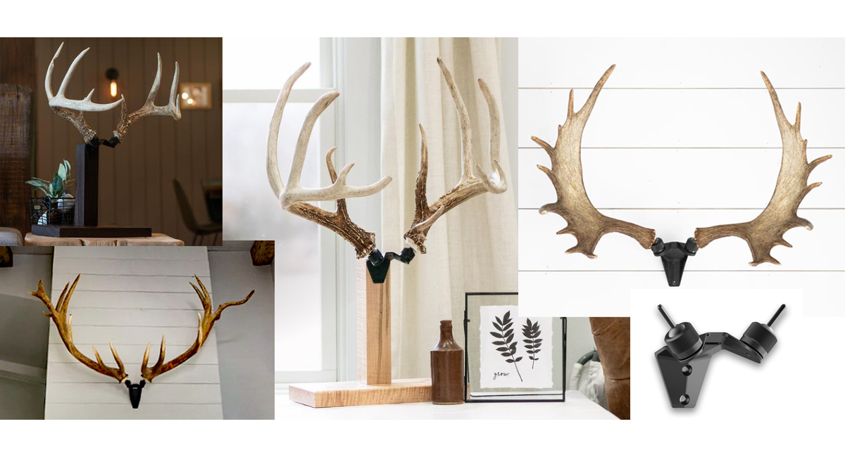 RACK HUB offers a Way to Display your Shed Antlers