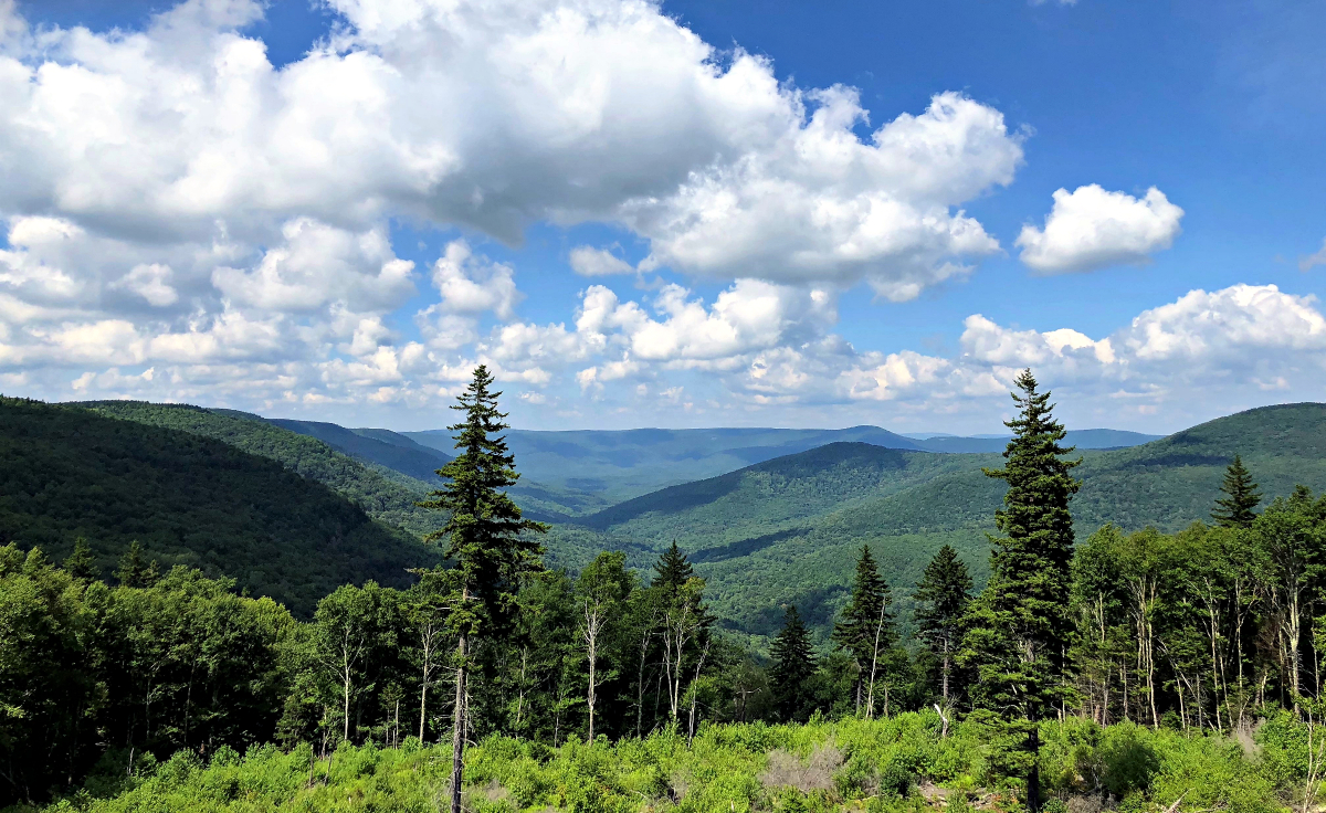 The Path Less Traveled #008 – Experiences Hiking In The Cranberry Wilderness