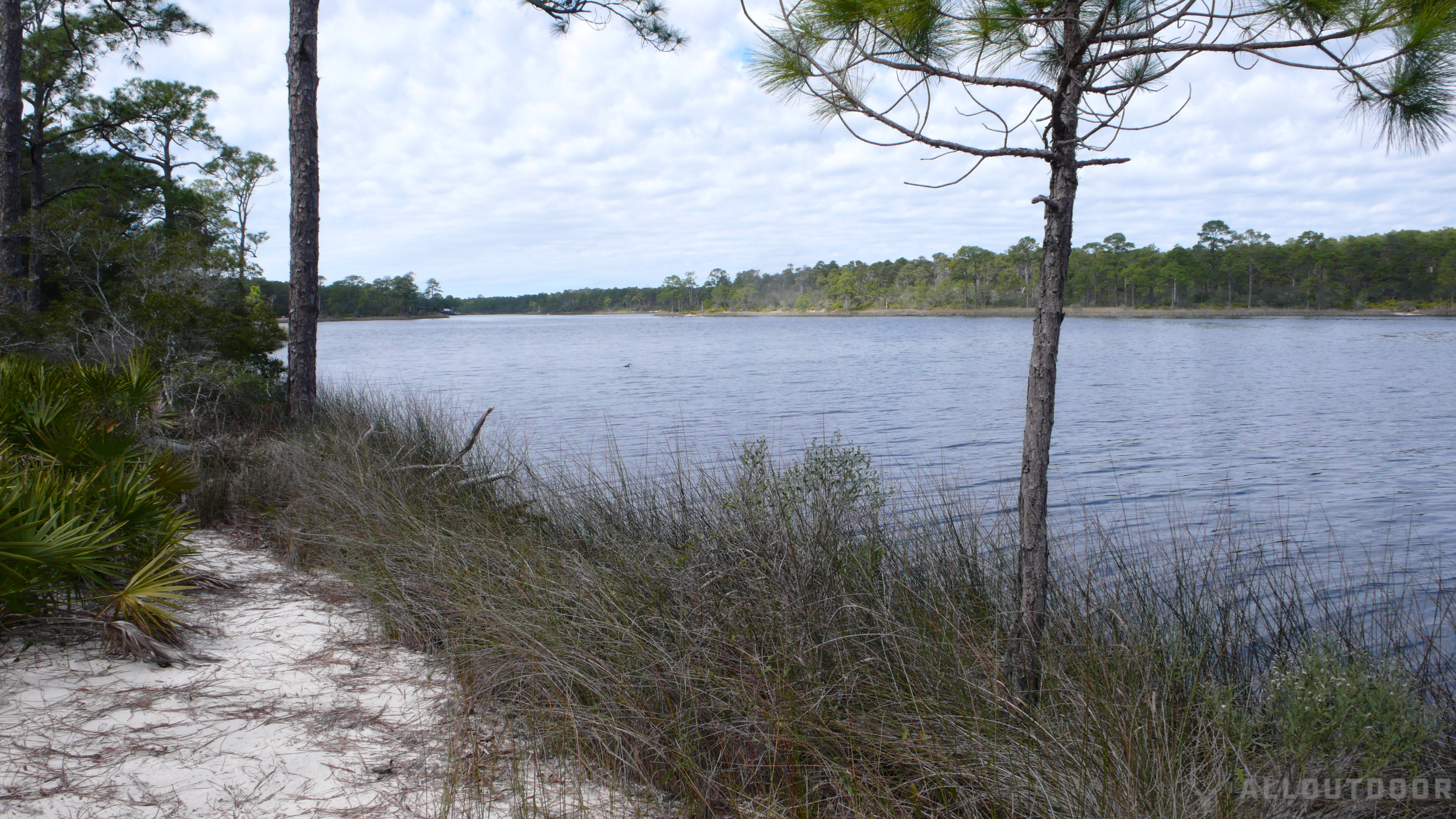 St Andrews & Camp Helen state park review
