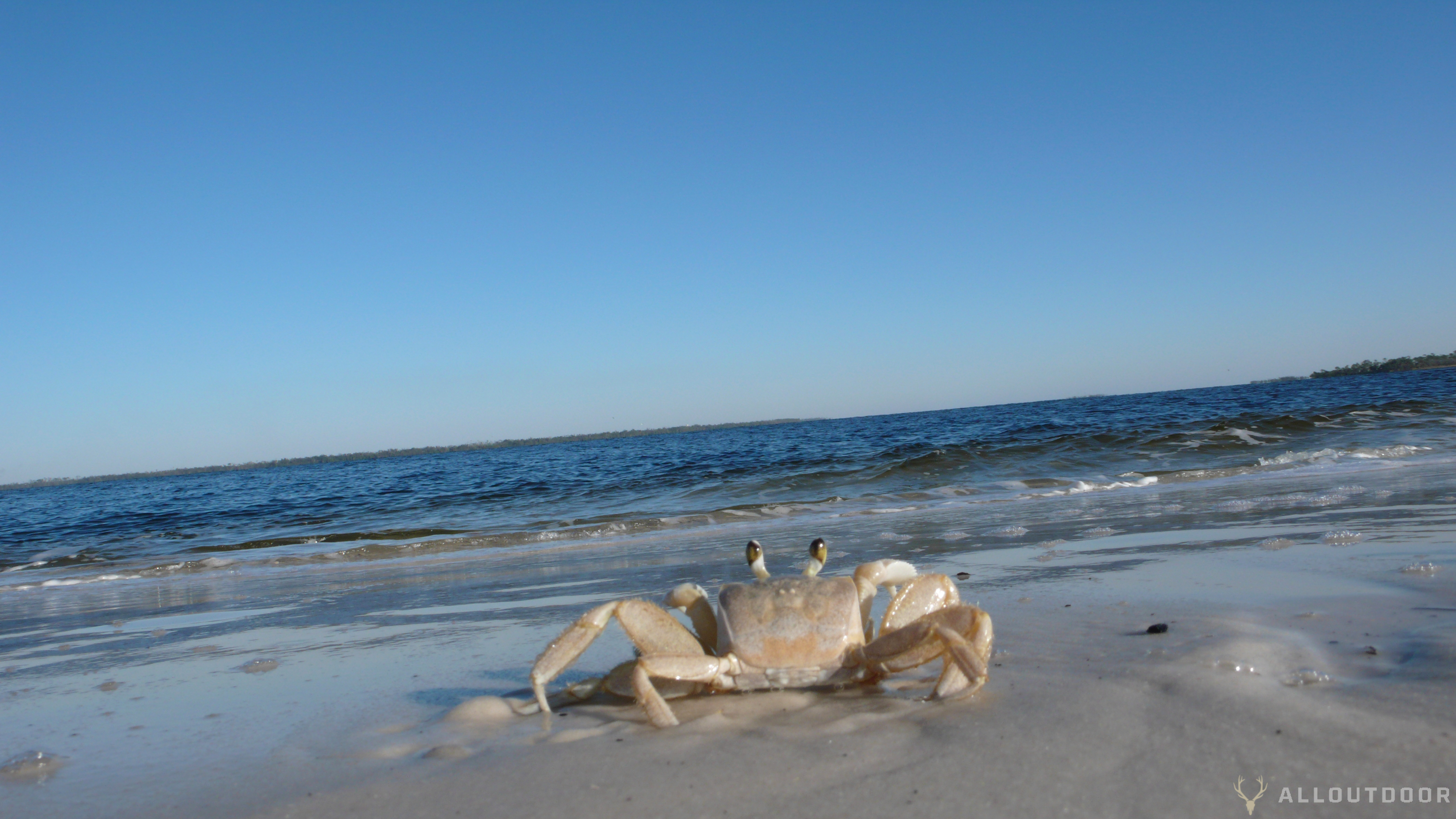 AO Review: Florida's St Andrews State Park & Camp Helen State Park