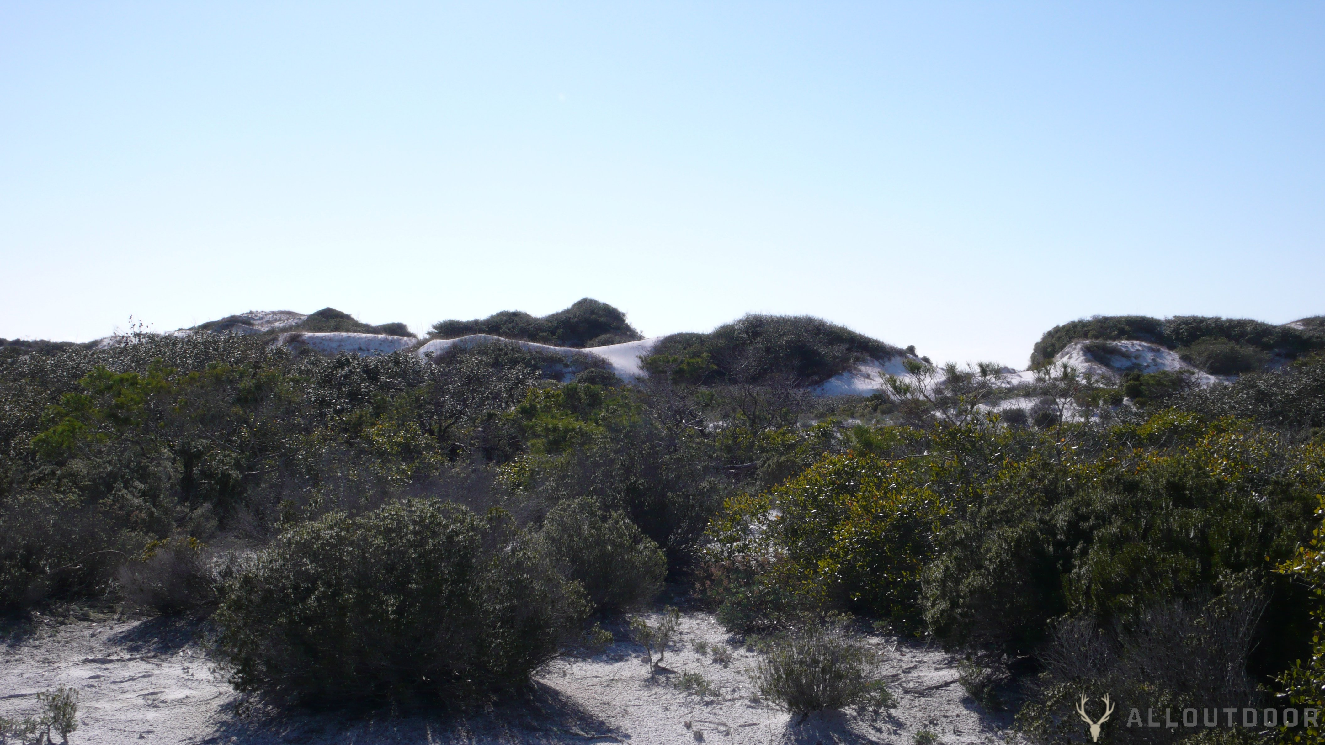 St. Andrews State Park & Camp Helen State Park review