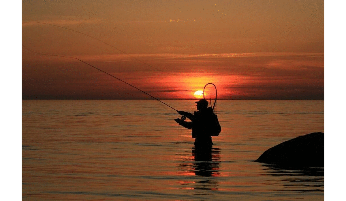 Boating and Fishing Foundation says 2020 Banner Year for Fishing