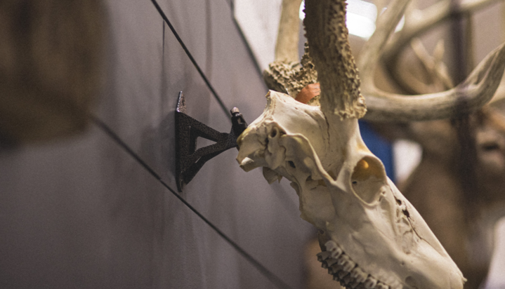 New DIY Hang Up Taxidermy Mount from BIG 8 Products