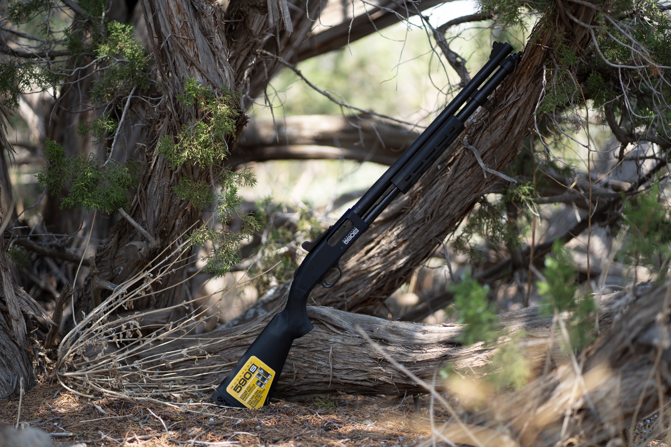 Introducing the New Mini-Shell Compatible Mossberg 590s Lineup